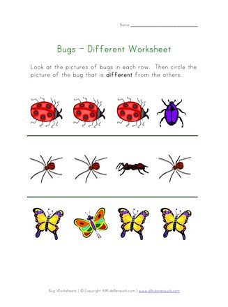 Insect Worksheets for Preschoolers Bugs Worksheet Recognize Different Insects
