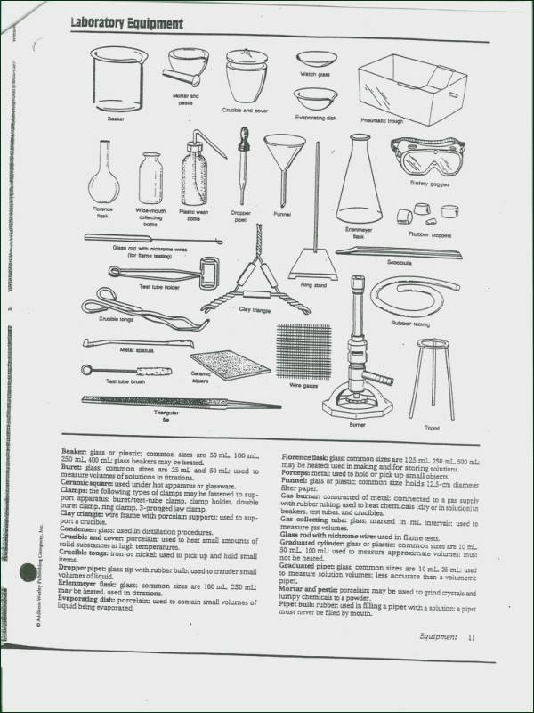 Lab Equipment Worksheet Answer Lab Equipment Worksheet Answers Promotiontablecovers