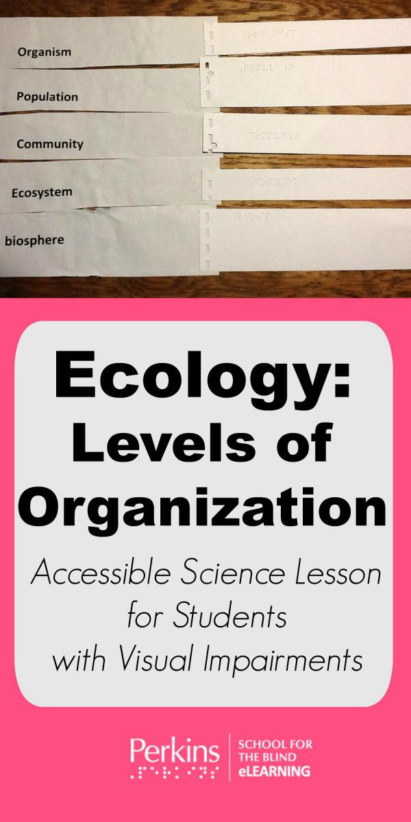 Levels Of Ecological organization Worksheet Ecology Levels Of organization