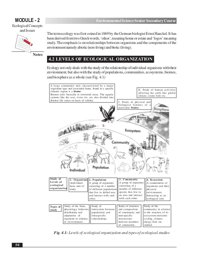 Levels Of Ecological organization Worksheet Introduction Life Science by Verna Upton Lessons