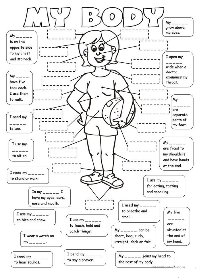 Middle School Health Worksheets Pdf My Body 2 Tasks