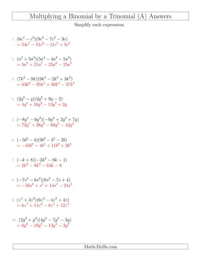 Multiplying and Dividing Monomials Worksheet Multiplying Binomial by Trinomial Free Math Worksheets