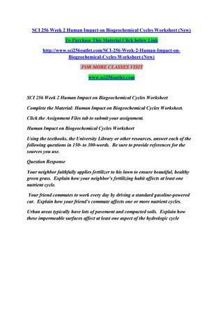 Nitrogen Cycle Worksheet Answers 20 Nutrient Cycles Worksheet Answers In 2020