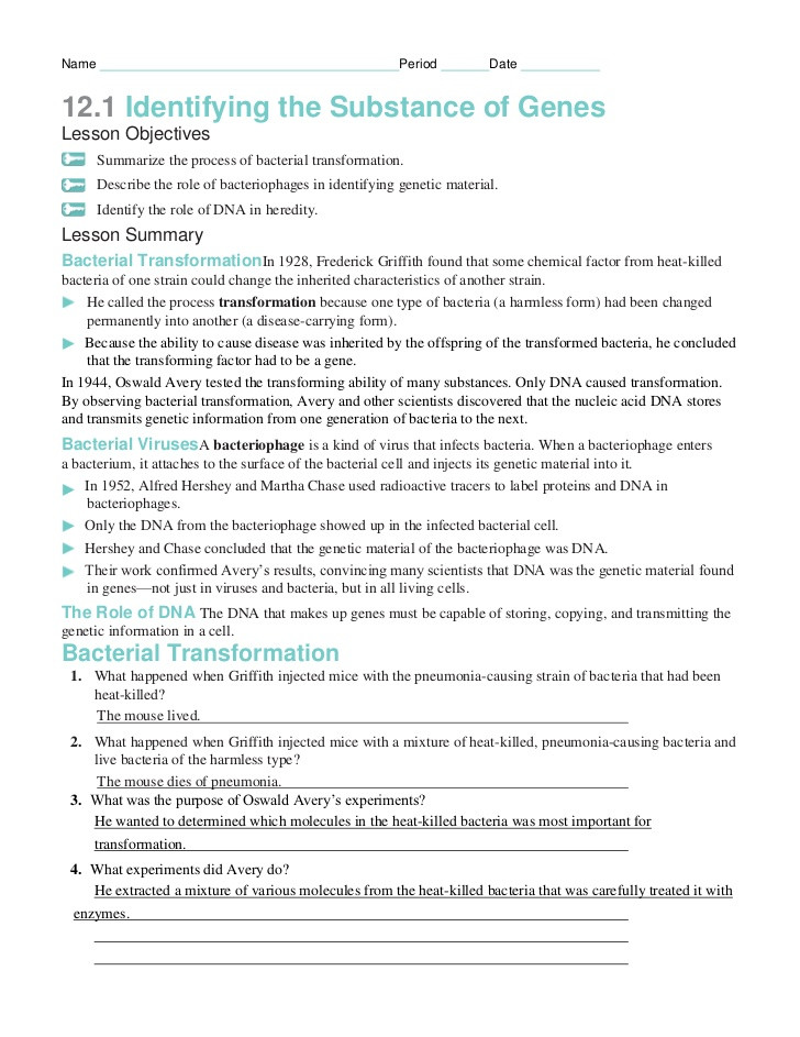 Nucleic Acid Worksheet Answers Chapter12 Packet