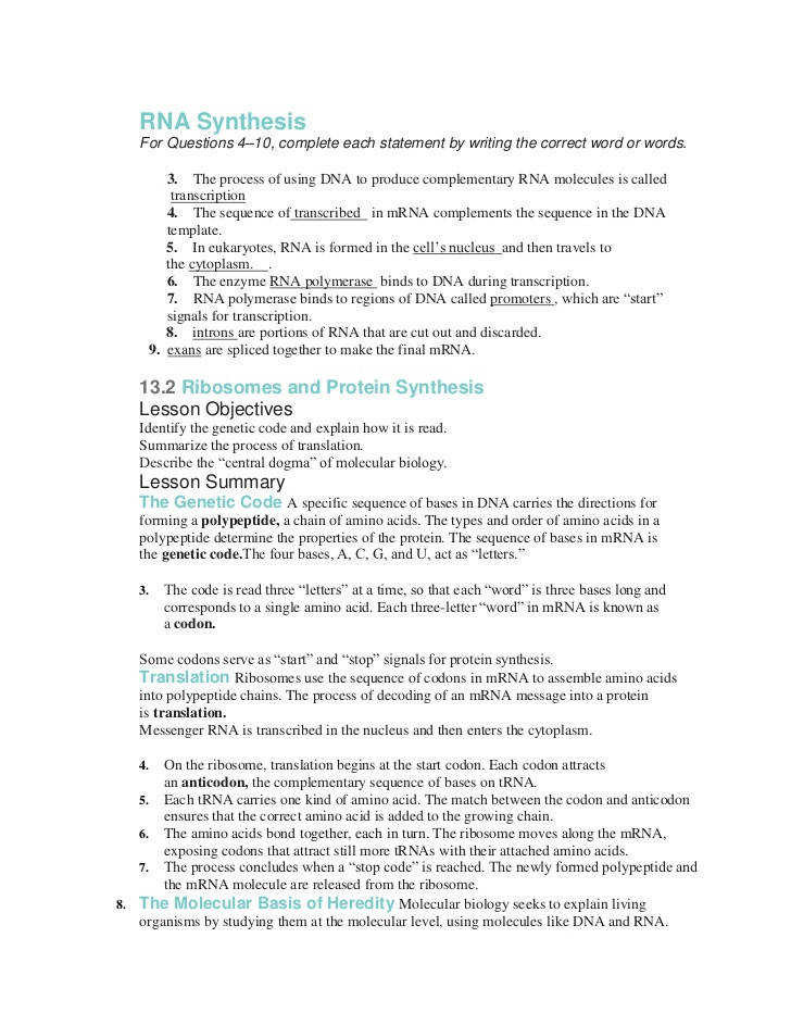 Nucleic Acid Worksheet Answers Nucleic Acid and Protein Synthesis Worksheet Nidecmege