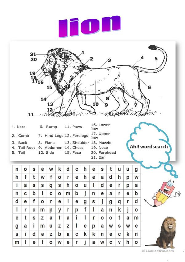 Parts Of the Horse Worksheet Lion Body Parts Vocabulary English Esl Worksheets for