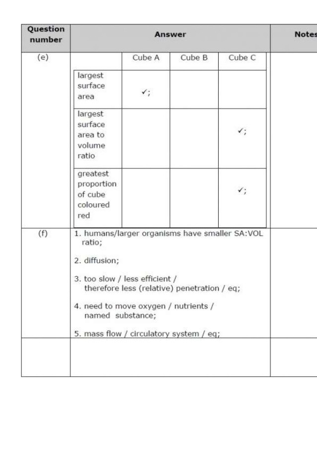 Passive and Active Transport Worksheet 31 Passive and Active Transport Worksheet 6 Answers Free