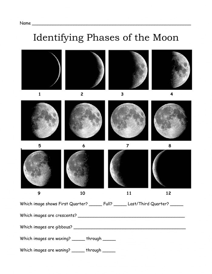 Phases Of the Moon Worksheet Identifying the Moon S Phases Worksheets