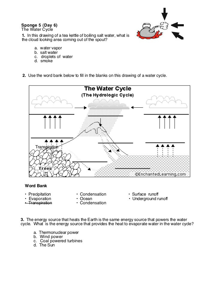 Properties Of Water Worksheet Answers 28 [ Worksheets Water ]