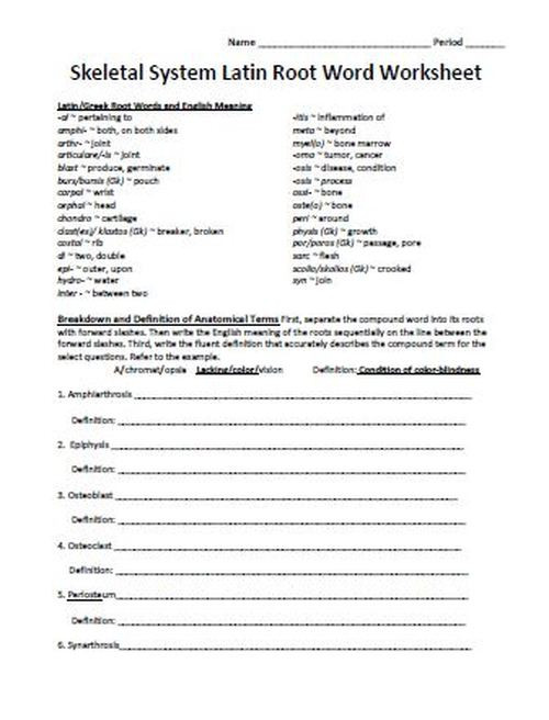 Root Word Worksheets Middle School Latin Root Word Worksheet Set for Unit E Human Anatomy