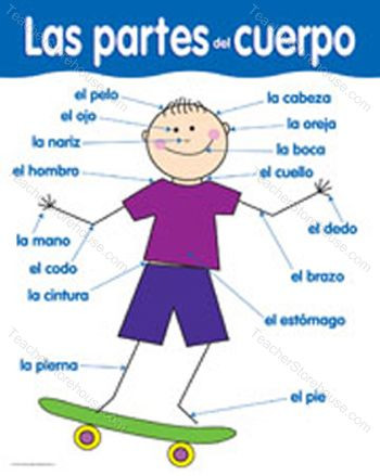 Spanish Body Parts Worksheet Body Parts & Clothing Lessons Tes Teach