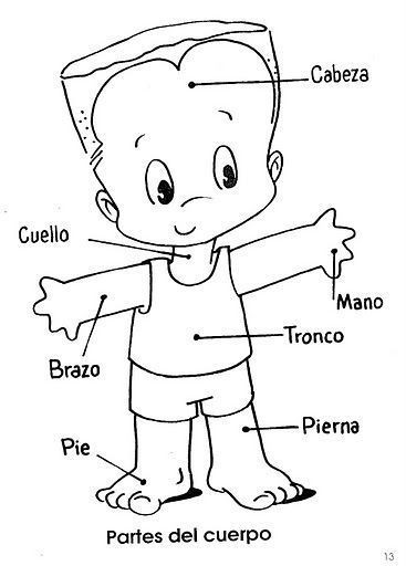 Spanish Body Parts Worksheet Pin On Spanish Preschool Elementary