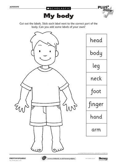 Spanish Body Parts Worksheet Pin On Speak Spanish