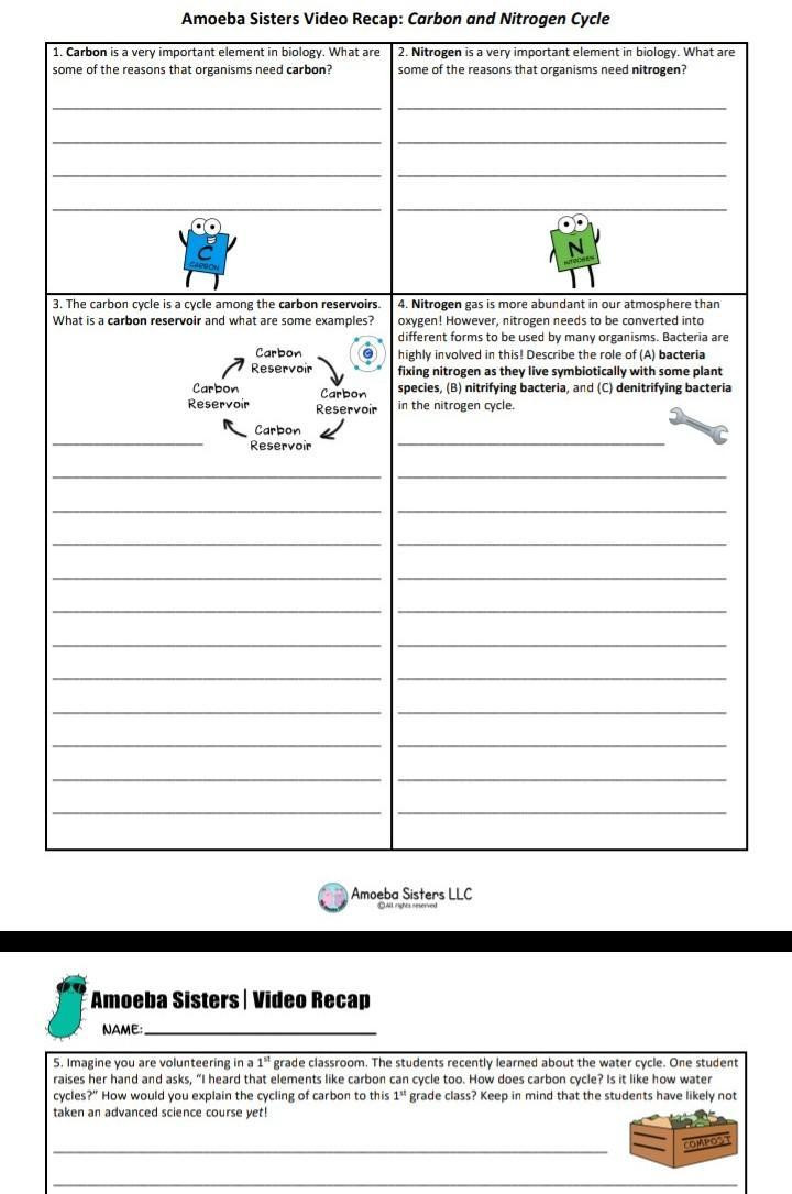 The Carbon Cycle Worksheet Answers Amoeba Sisters Video Recap Carbon and Nitrogen