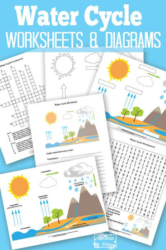 The Carbon Cycle Worksheet Answers Free Printable Water Cycle Worksheets Diagrams