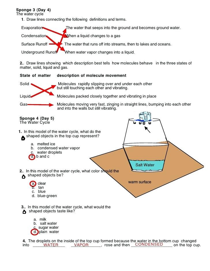 The Carbon Cycle Worksheet Answers Water Cycle Worksheet Fill In the Blank Carbon Cycle
