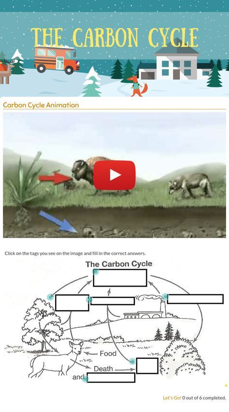 "The Carbon Cycle Worksheet Wizer Me Blended Worksheet ""the Carbon Cycle"""