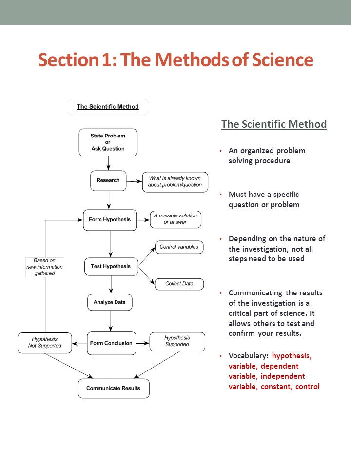 The Nature Of Science Worksheet Chapter 1 the Nature Of Science Ppt Video Online