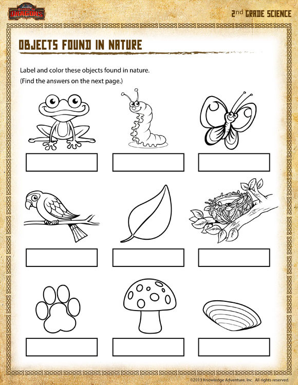 The Nature Of Science Worksheet Objects Found In Nature View – 2nd Grade Science Worksheet sod