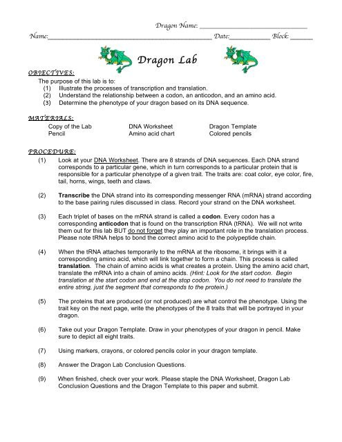 Transcription and Translation Worksheet Answers Lab Dragon Lab 10 11 Nnhsbergbio