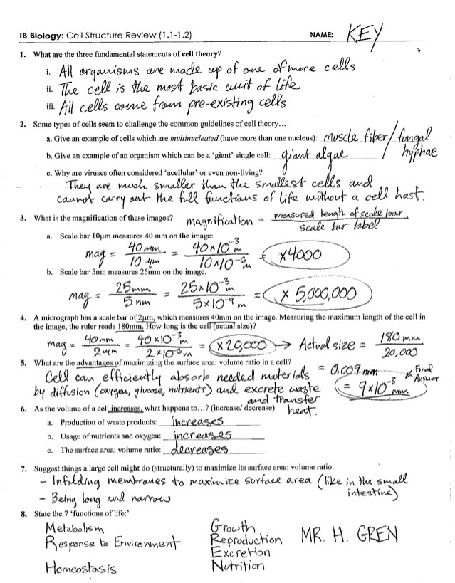 Transport In Cells Worksheet Answers Ib Cell Structure Review Key 1 1 1 2