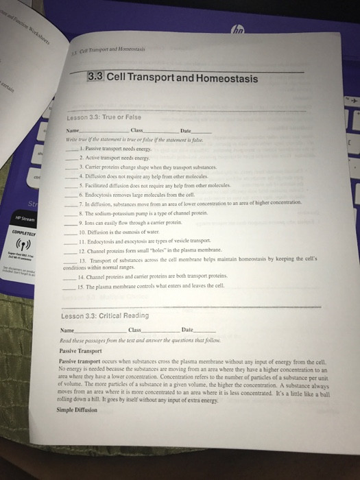 Transport In Cells Worksheet Answers solved Passive Transport Needs Energy Active Transport N