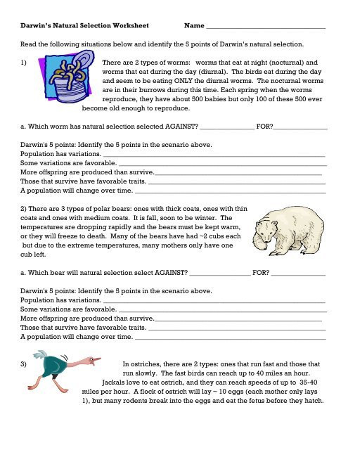 Types Of Natural Selection Worksheet Darwin S Natural Selection Worksheet