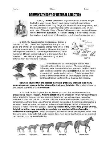 Types Of Natural Selection Worksheet Darwins Natural Selection Worksheet the Best and Most