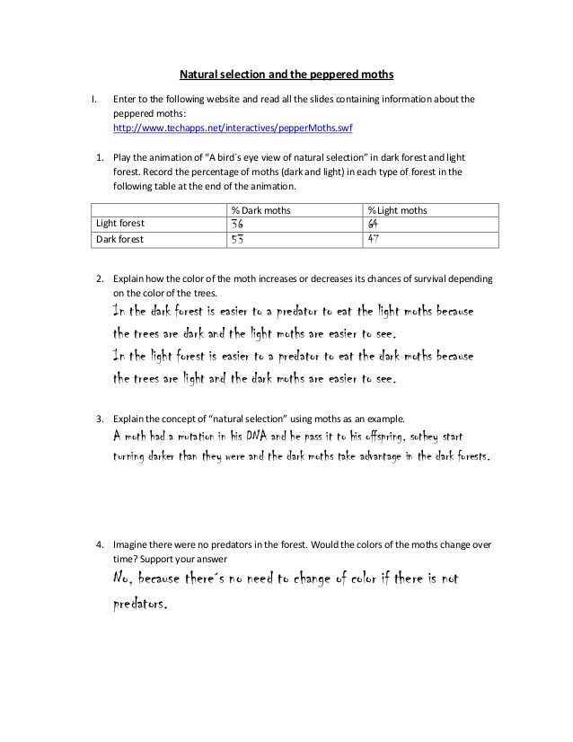 Types Of Natural Selection Worksheet Natural Selection and the Peppered Moths